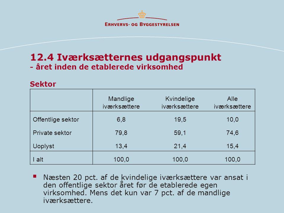 12.4 Iværksætternes udgangspunkt - året inden de etablerede virksomhed Sektor