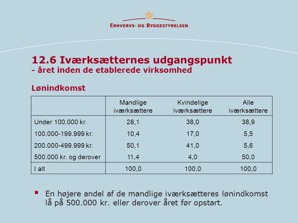 12.6 Iværksætternes udgangspunkt - året inden de etablerede virksomhed Lønindkomst