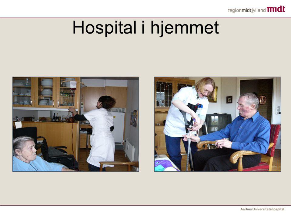 Hospital i hjemmet