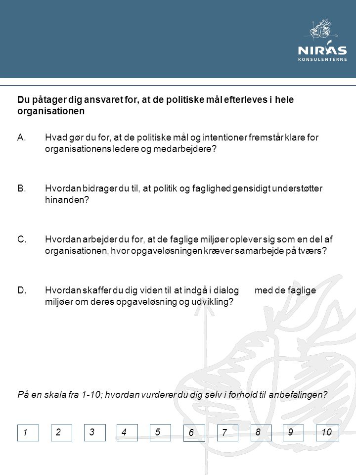 Du påtager dig ansvaret for, at de politiske mål efterleves i hele organisationen