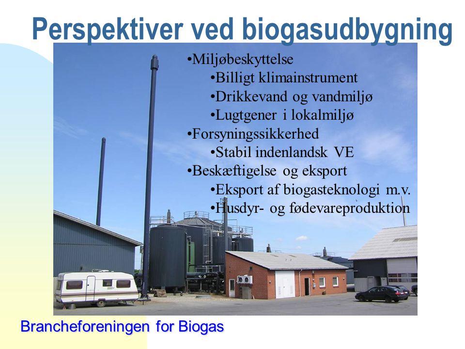 Perspektiver ved biogasudbygning