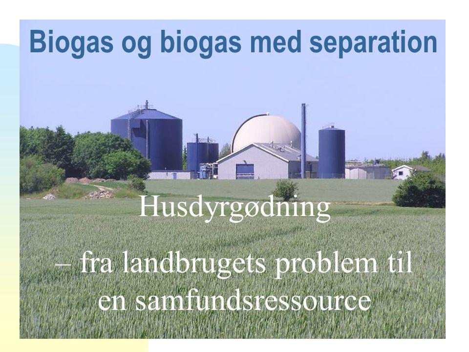 Biogas og biogas med separation