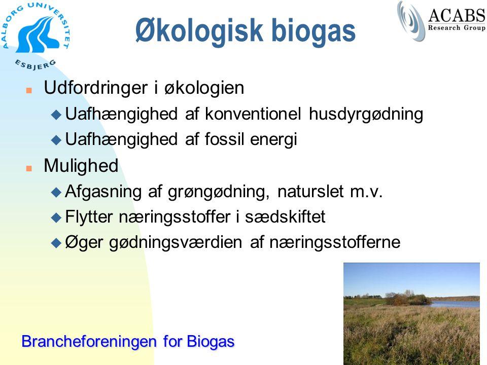 Økologisk biogas Udfordringer i økologien Mulighed