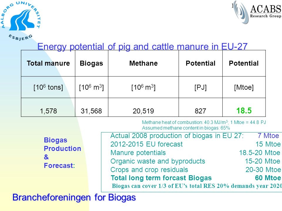 Energy potential of pig and cattle manure in EU-27