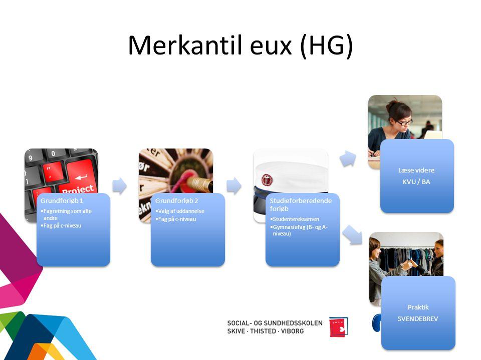 Merkantil eux (HG) Kontor og Finans kan kun tages som eux