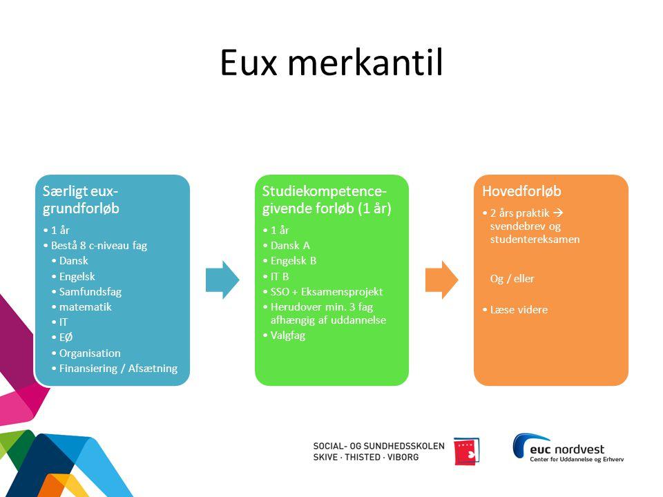 Eux merkantil Særligt eux-grundforløb 1 år Bestå 8 c-niveau fag Dansk
