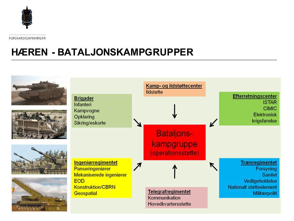 HÆREN - BATALJONSKAMPGRUPPER