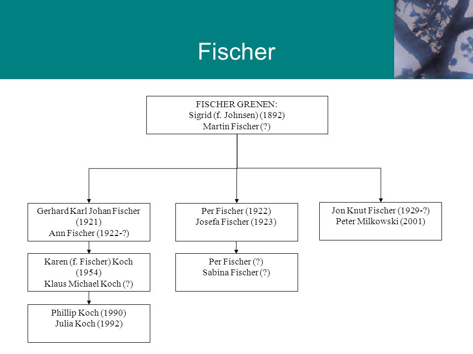 Fischer Grenen Fischer