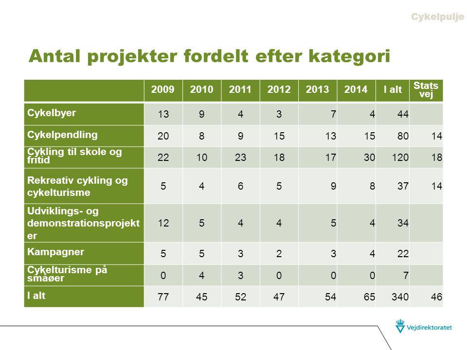 Antal projekter fordelt efter kategori