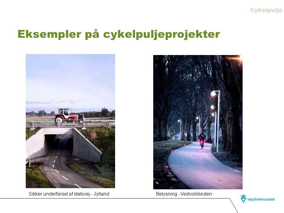 Eksempler på cykelpuljeprojekter