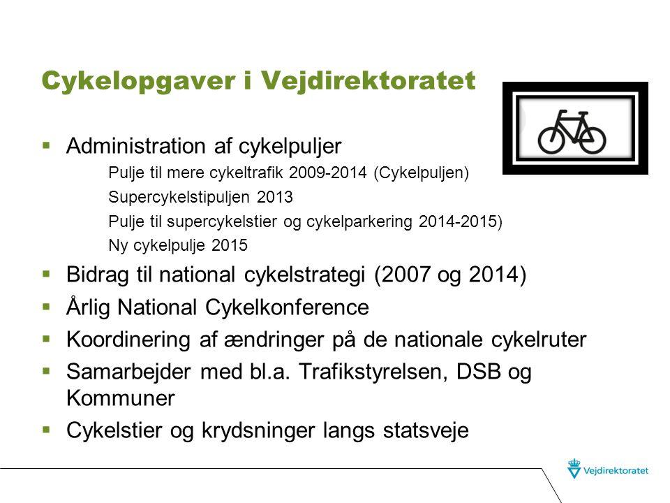 Cykelopgaver i Vejdirektoratet