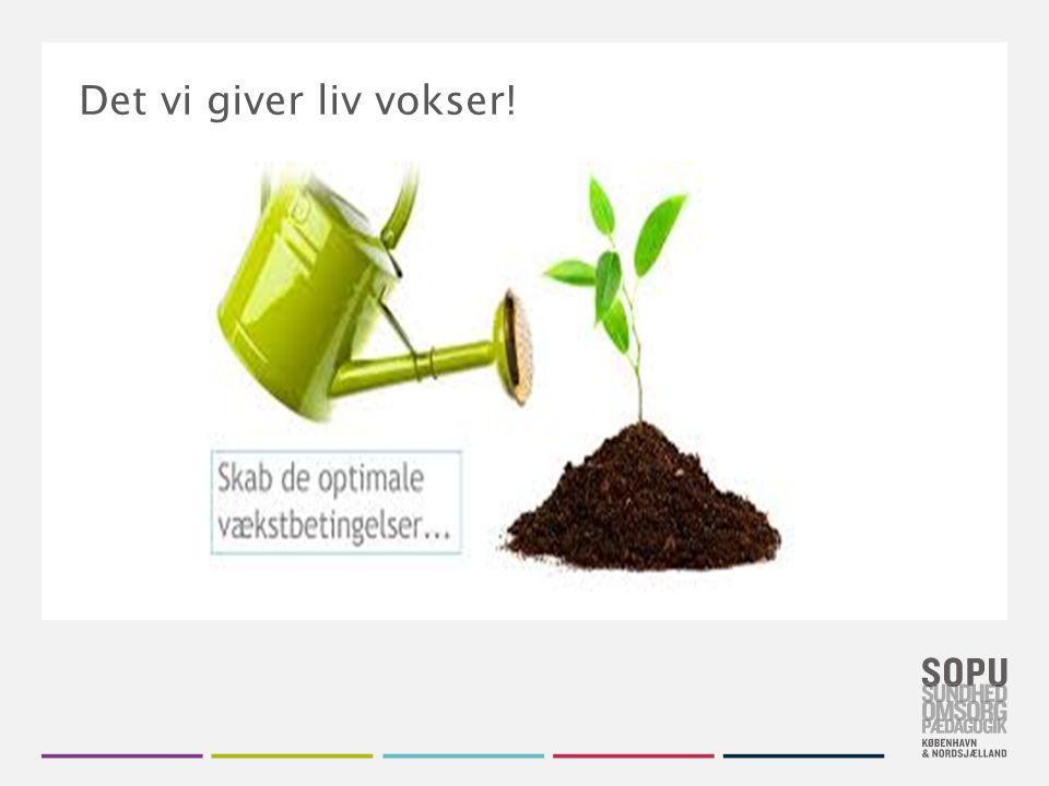 Det vi giver liv vokser! .