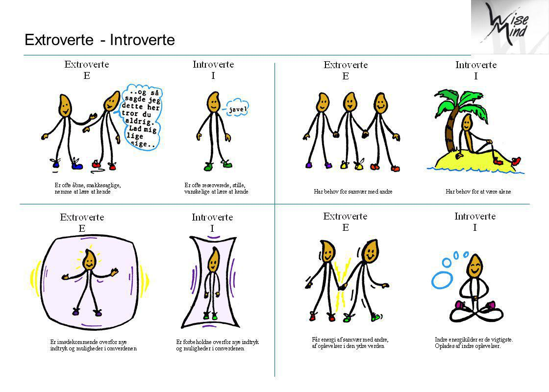 Extroverte - Introverte