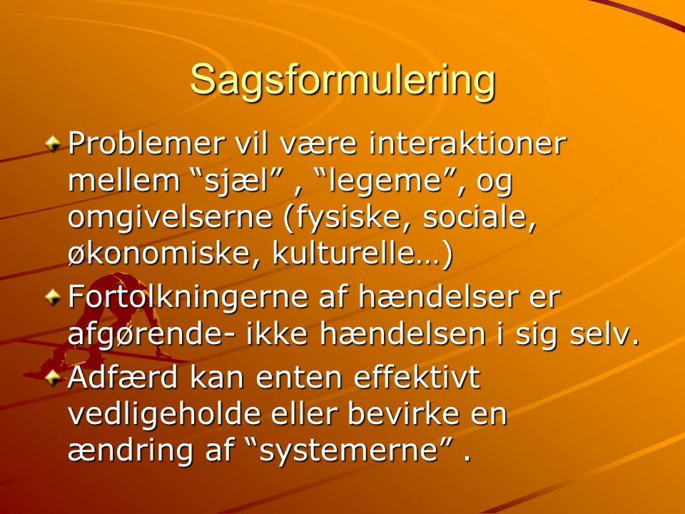 Sagsformulering Problemer vil være interaktioner mellem sjæl , legeme , og omgivelserne (fysiske, sociale, økonomiske, kulturelle…)