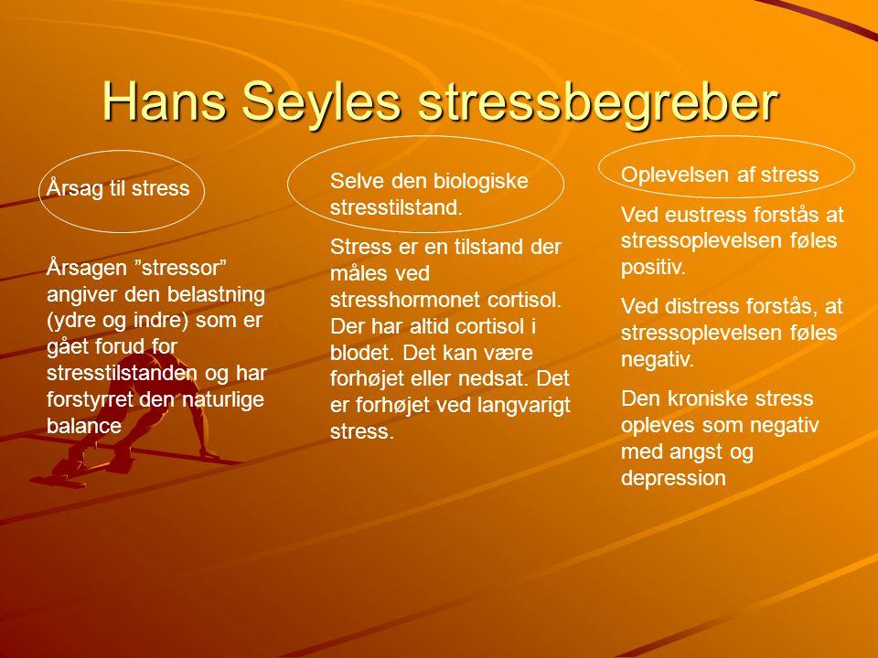 Hans Seyles stressbegreber