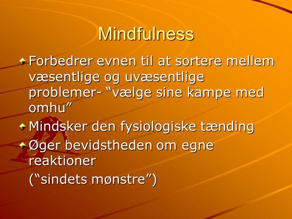 Mindfulness Forbedrer evnen til at sortere mellem væsentlige og uvæsentlige problemer- vælge sine kampe med omhu