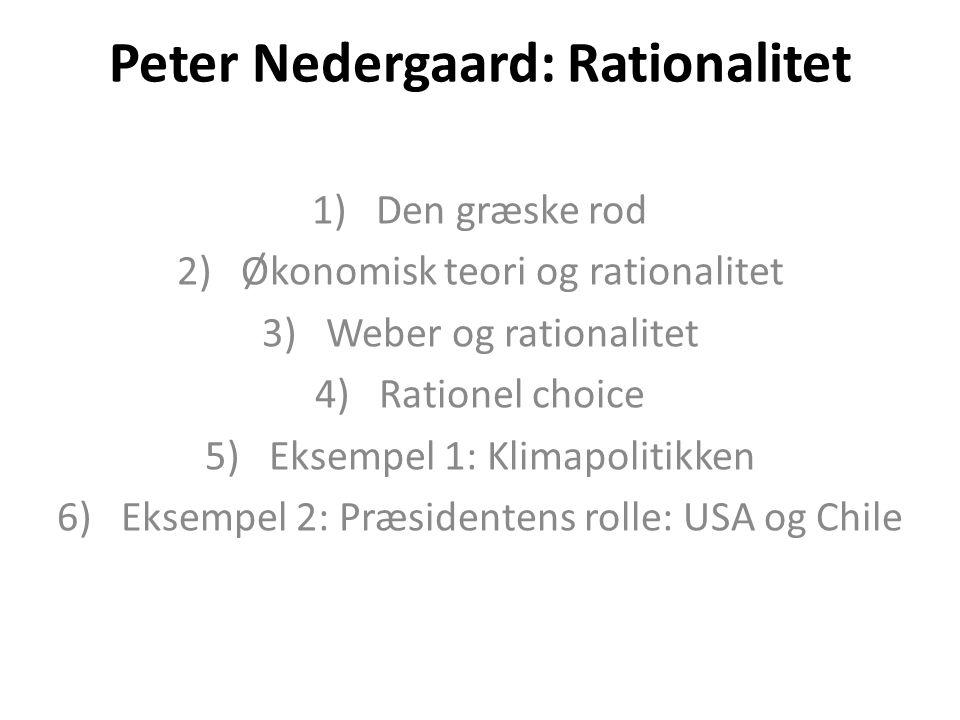 Peter Nedergaard: Rationalitet