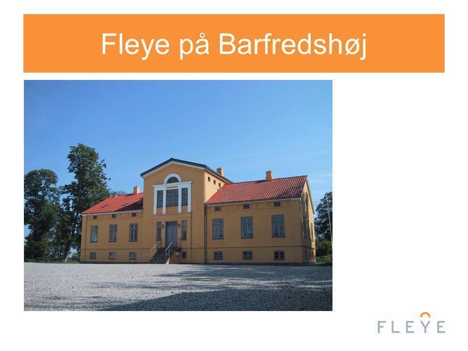 Fleye på Barfredshøj