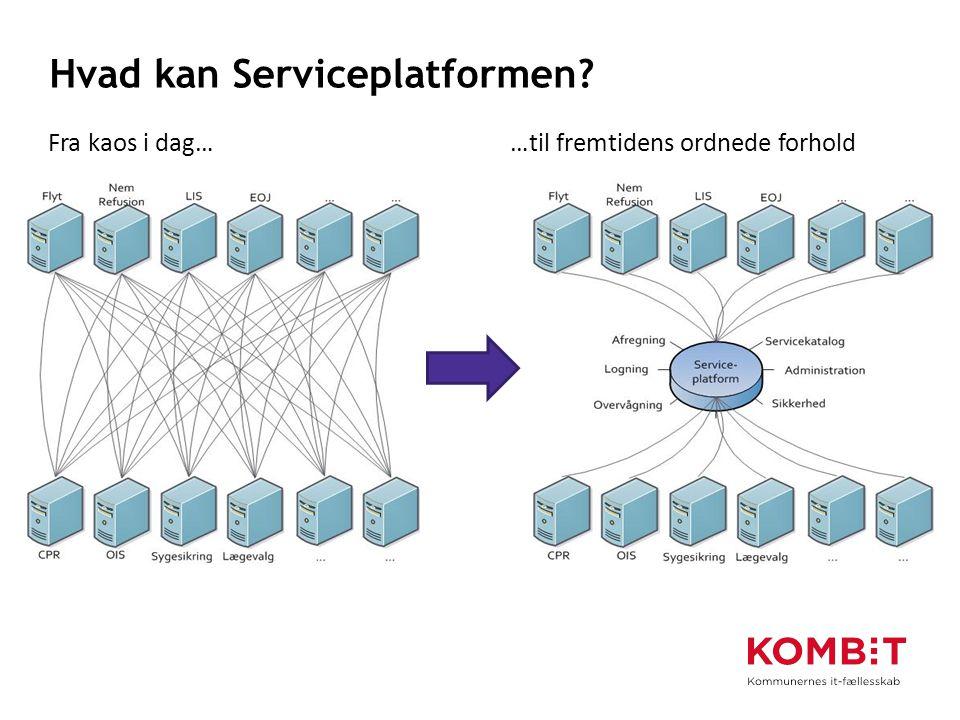 Hvad kan Serviceplatformen