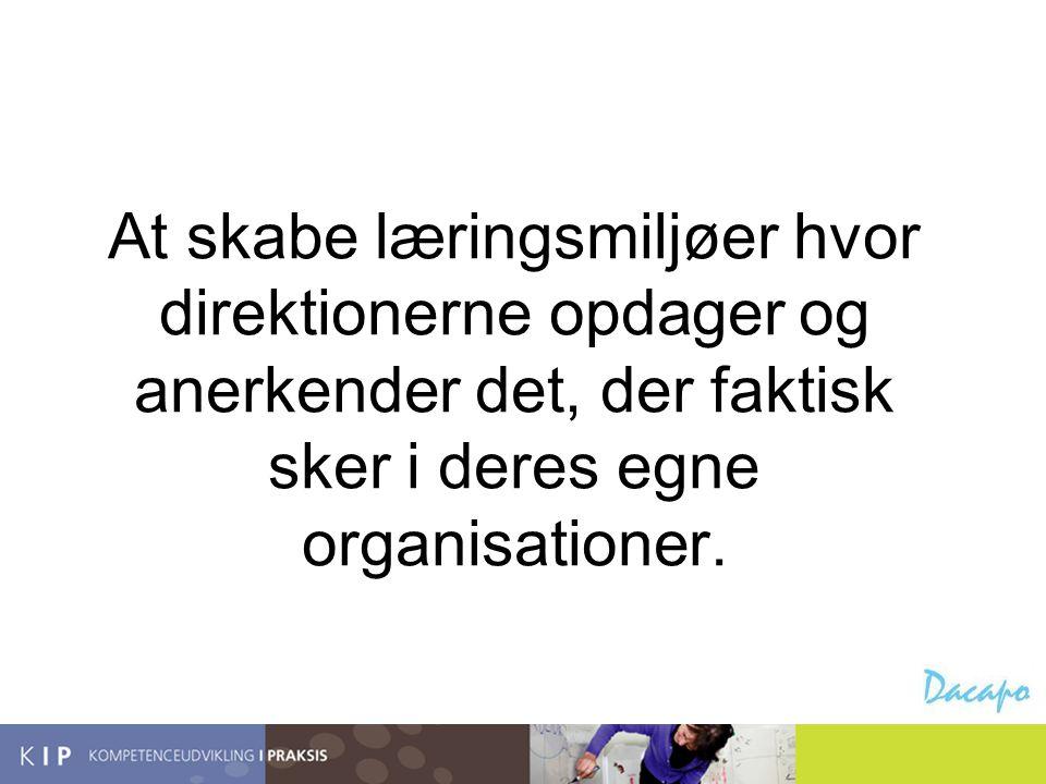 At skabe læringsmiljøer hvor direktionerne opdager og anerkender det, der faktisk sker i deres egne organisationer.