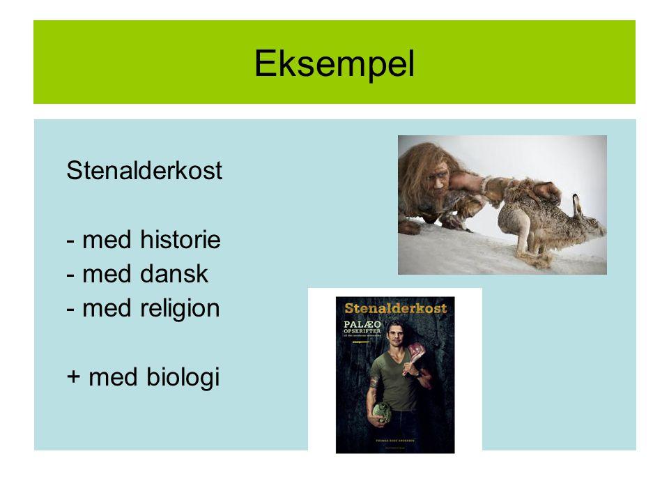 Eksempel Stenalderkost - med historie - med dansk - med religion