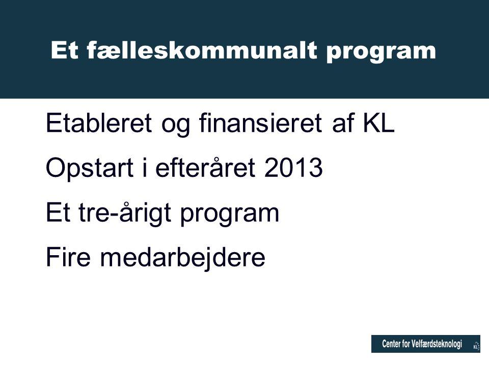 Etableret og finansieret af KL Opstart i efteråret 2013