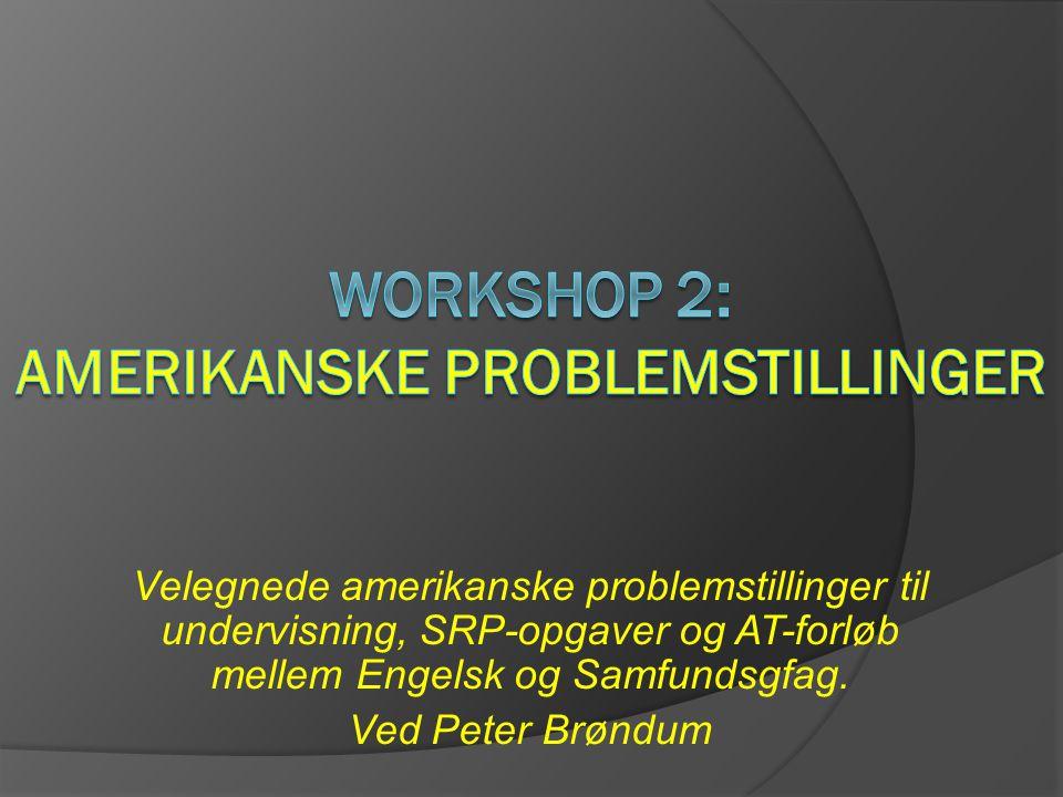 Workshop 2: Amerikanske problemstillinger
