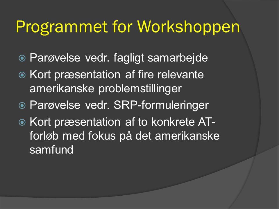 Programmet for Workshoppen