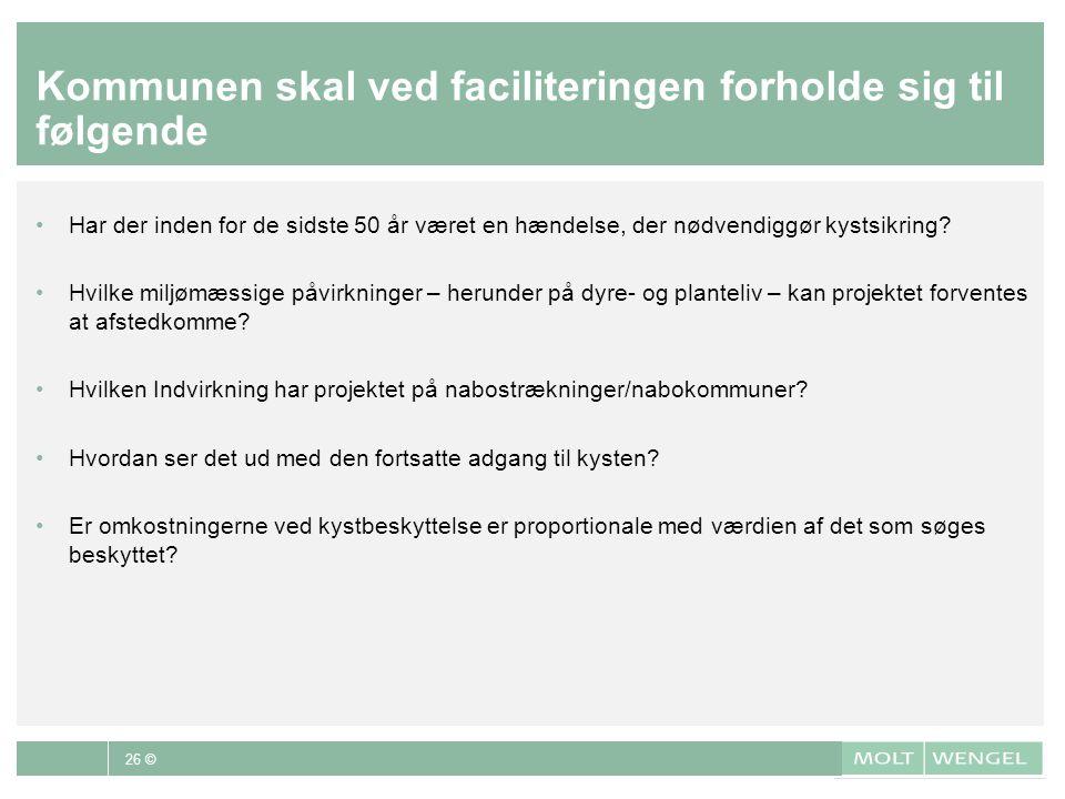 Kommunen skal ved faciliteringen forholde sig til følgende