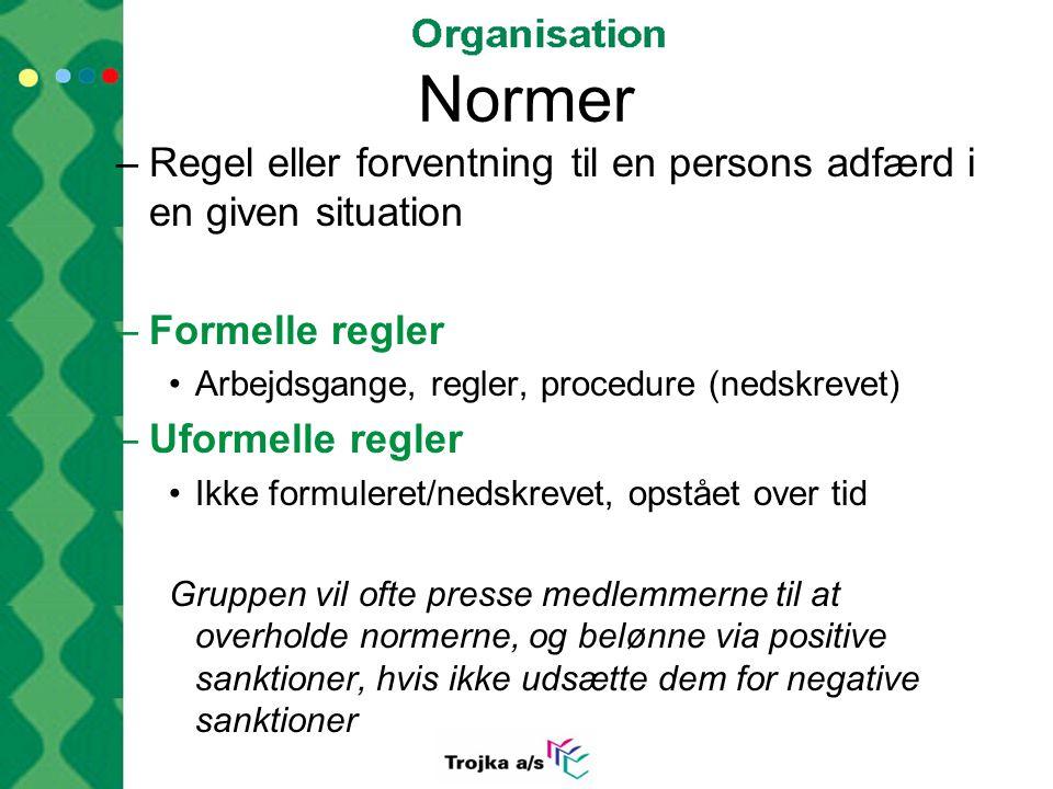 Normer Regel eller forventning til en persons adfærd i en given situation. Formelle regler. Arbejdsgange, regler, procedure (nedskrevet)