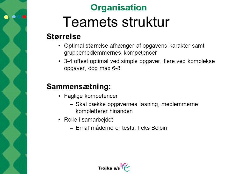 Teamets struktur Størrelse Sammensætning: