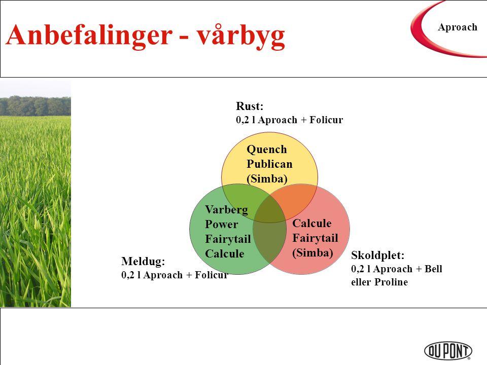 Anbefalinger - vårbyg Aproach Varberg Power Fairytail Calcule