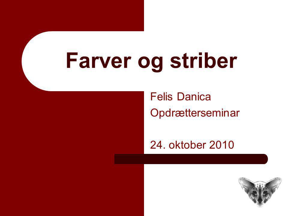 Felis Danica Opdrætterseminar 24. oktober 2010