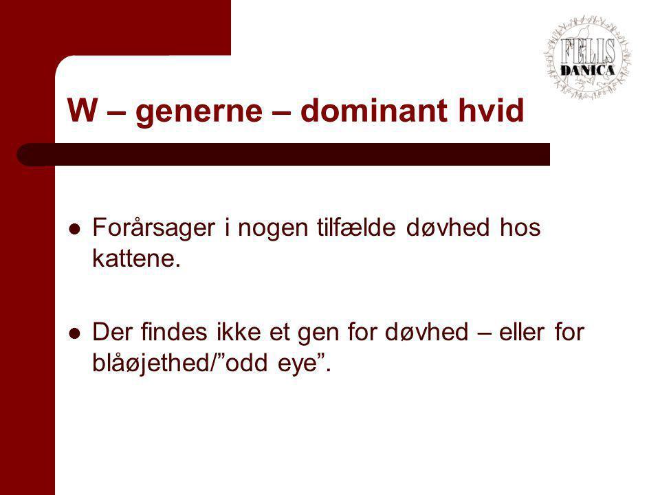 W – generne – dominant hvid