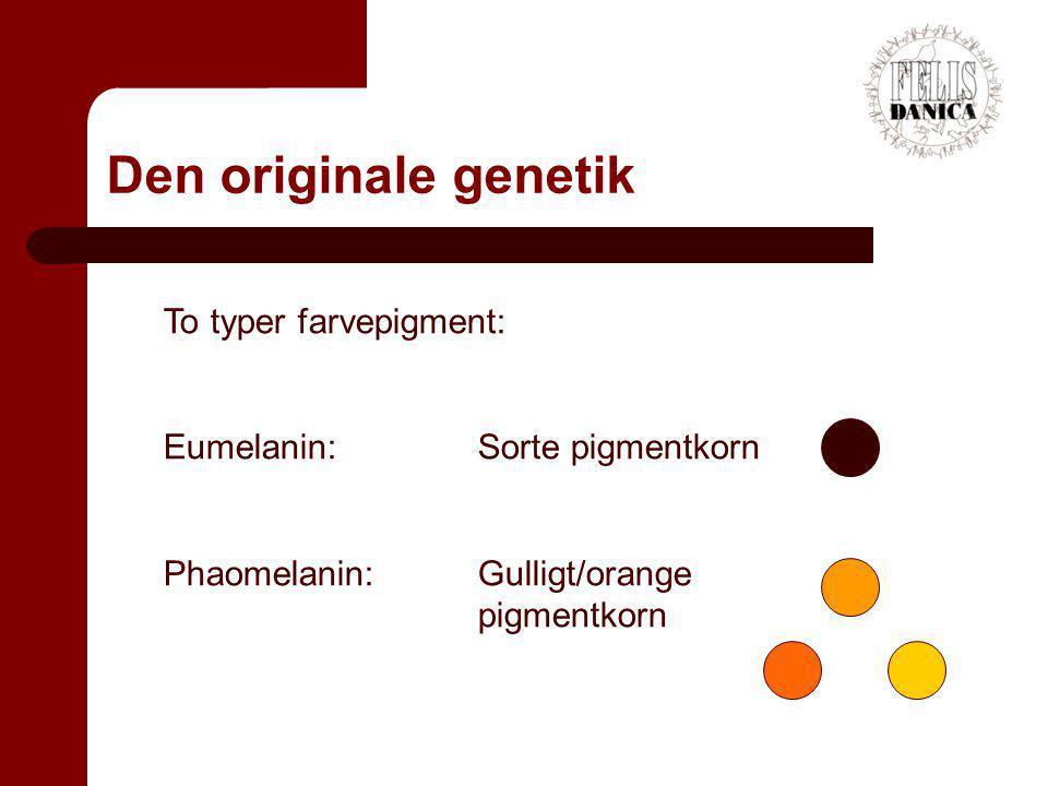 Den originale genetik To typer farvepigment: