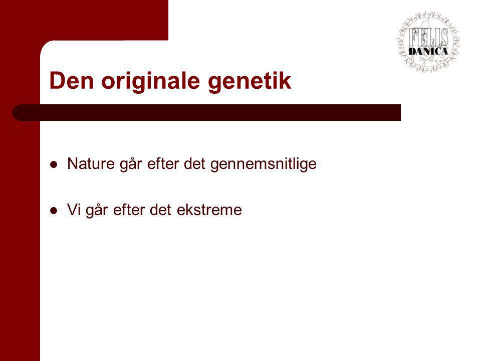 Den originale genetik Nature går efter det gennemsnitlige
