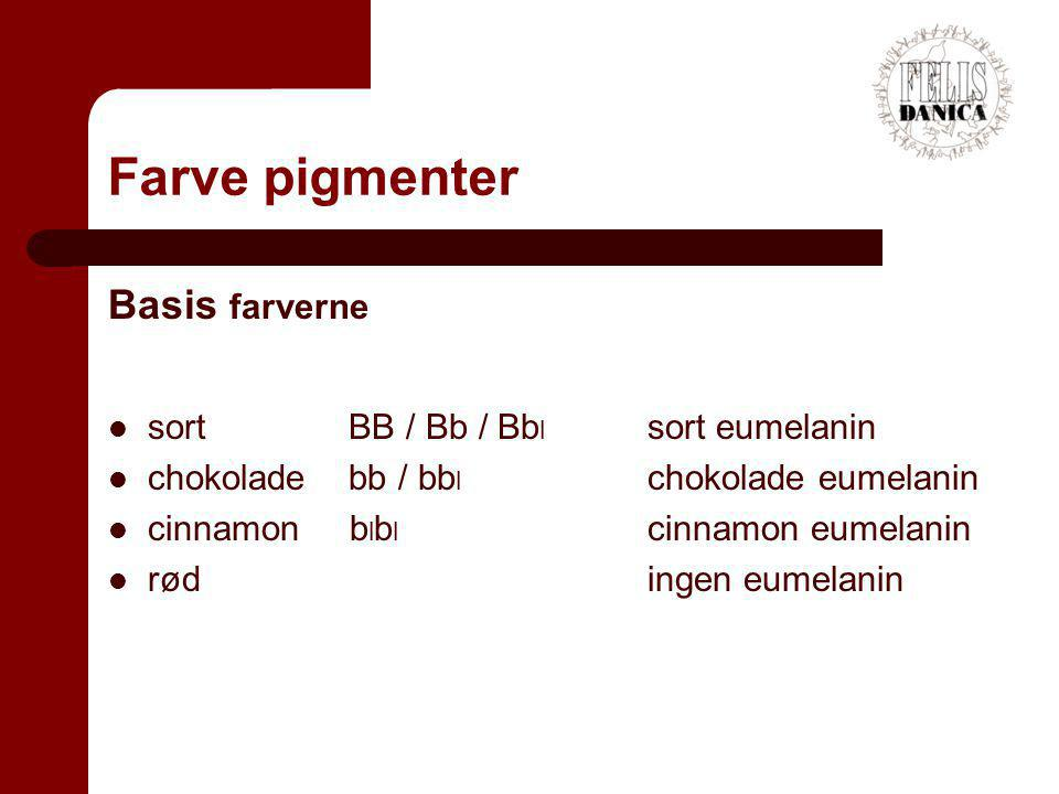 Farve pigmenter Basis farverne sort BB / Bb / Bbl sort eumelanin