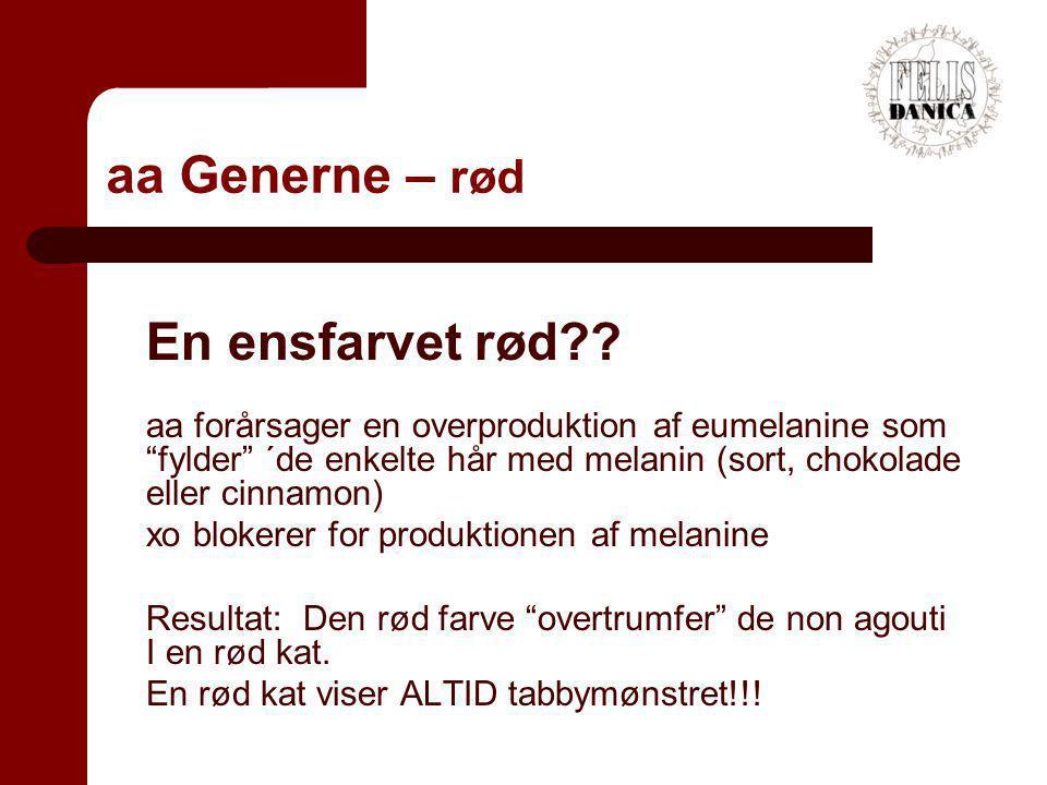 aa Generne – rød En ensfarvet rød
