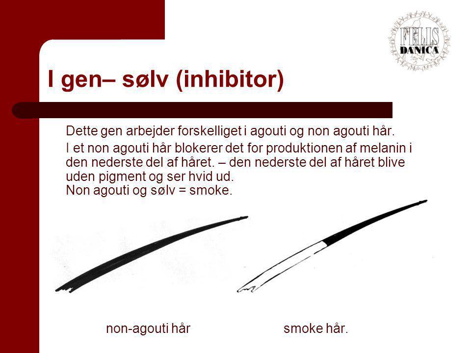 I gen– sølv (inhibitor)