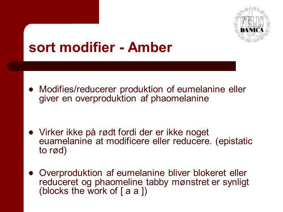 sort modifier - Amber Modifies/reducerer produktion of eumelanine eller giver en overproduktion af phaomelanine.
