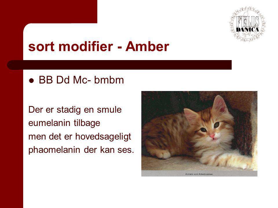 sort modifier - Amber BB Dd Mc- bmbm Der er stadig en smule