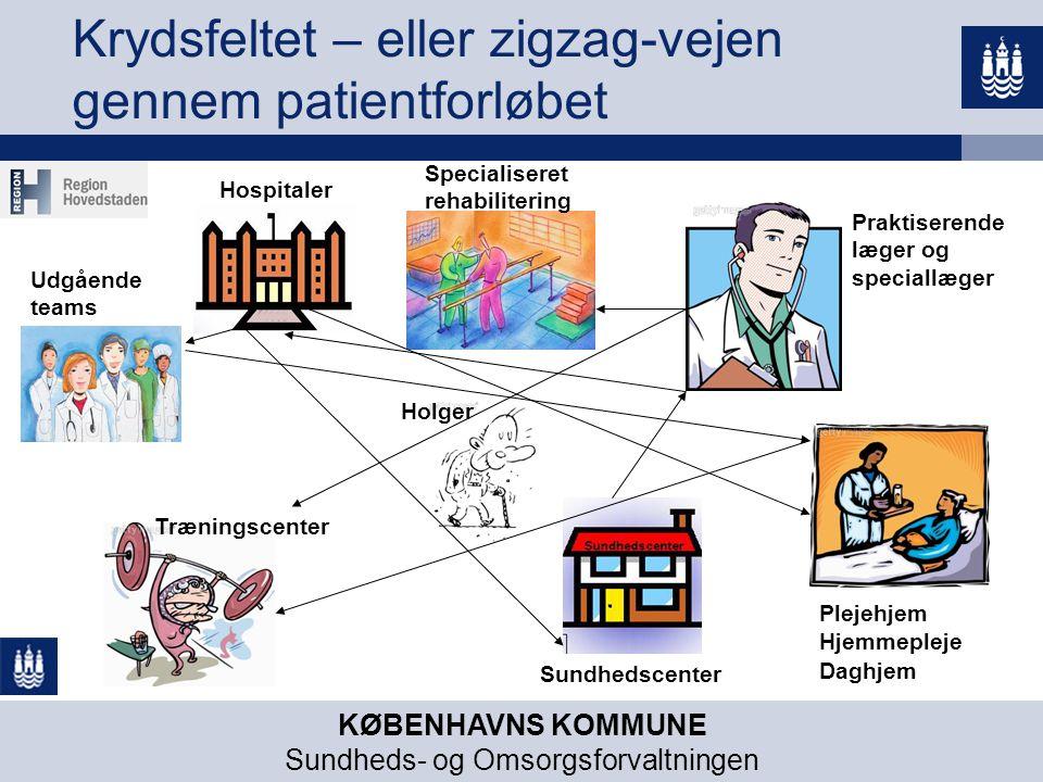 Krydsfeltet – eller zigzag-vejen gennem patientforløbet