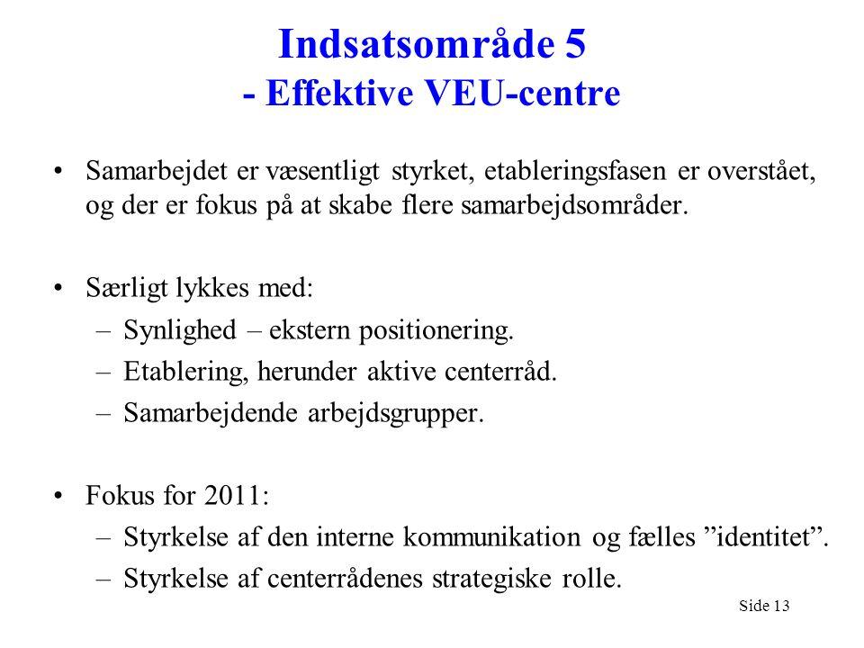 Indsatsområde 5 - Effektive VEU-centre