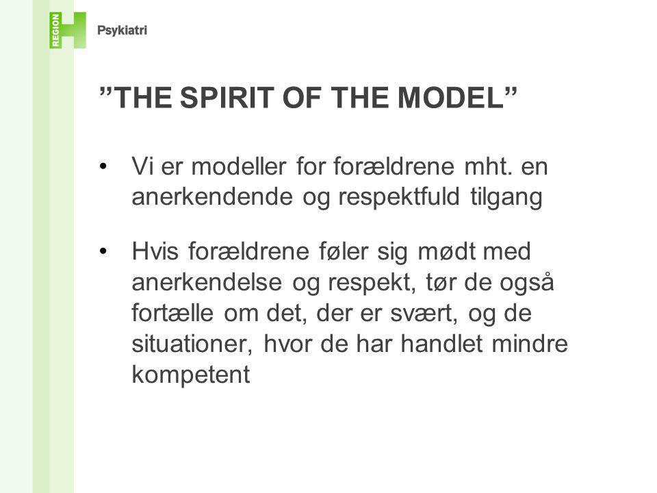 THE SPIRIT OF THE MODEL