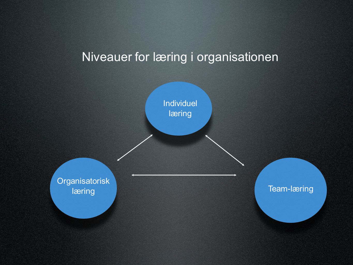 Niveauer for læring i organisationen