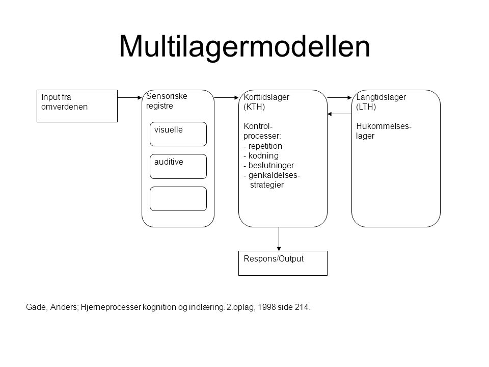 Multilagermodellen visuelle auditive Input fra omverdenen