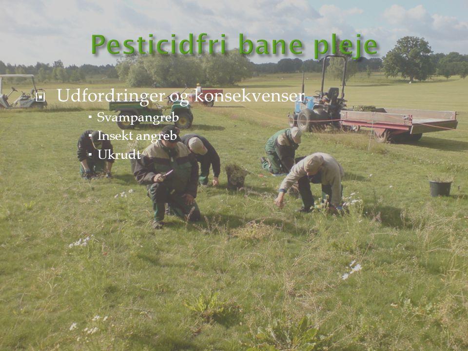 Pesticidfri bane pleje