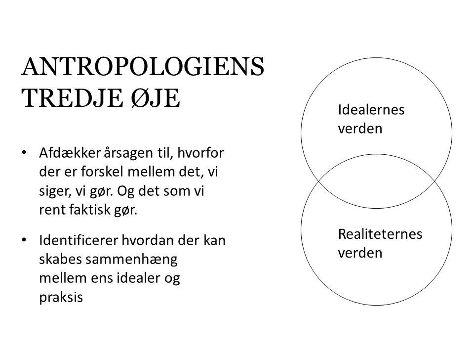 antropologiens tredje øje