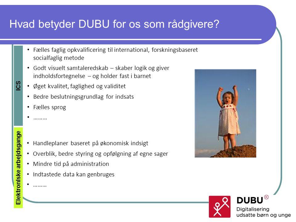 Hvad betyder DUBU for os som rådgivere