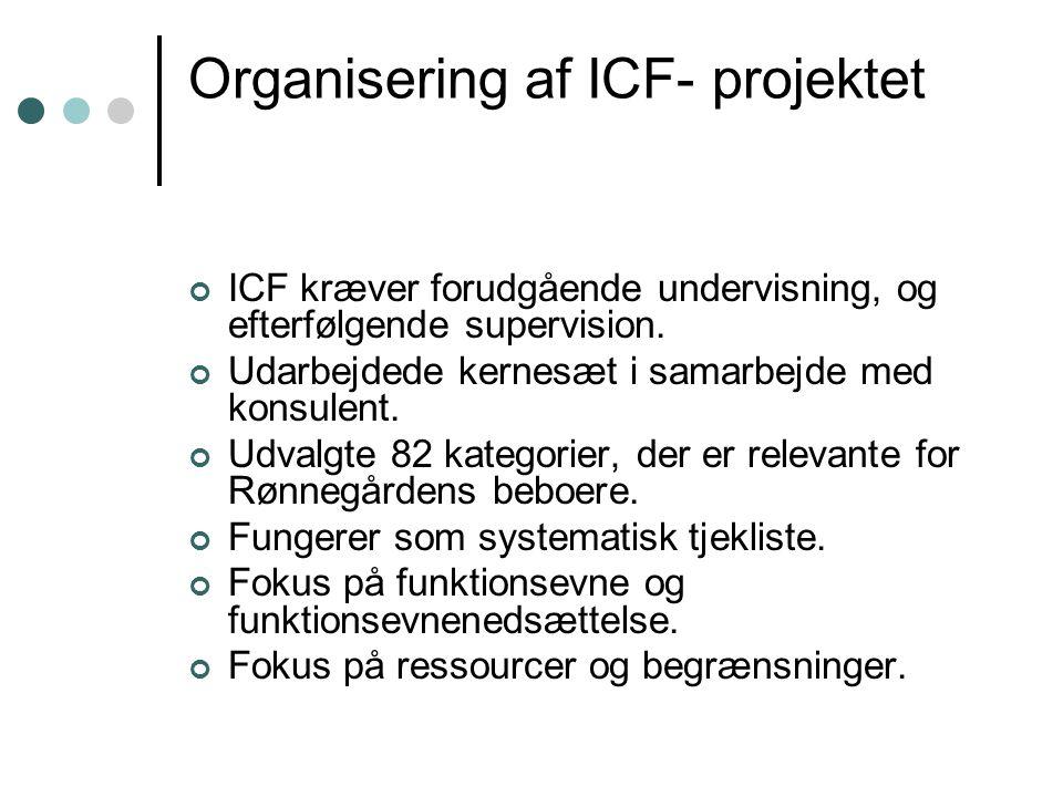 Organisering af ICF- projektet